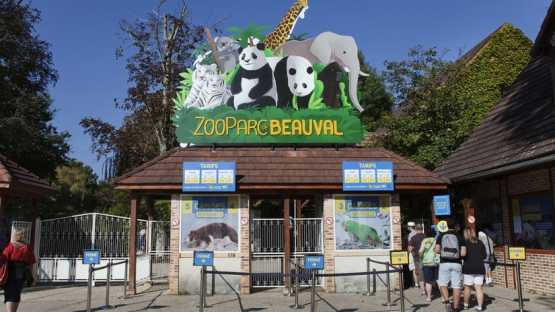 Beauval - 2 Jours